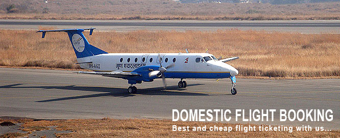 Domestic Flight Ticketing